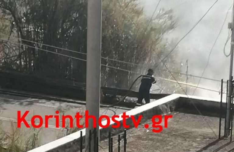 Κόρινθος: Σε εξέλιξη φωτιά στην παλιά εθνική οδό! Οι προσπάθειες για κατάσβεση στην κάμερα (Βίντεο)