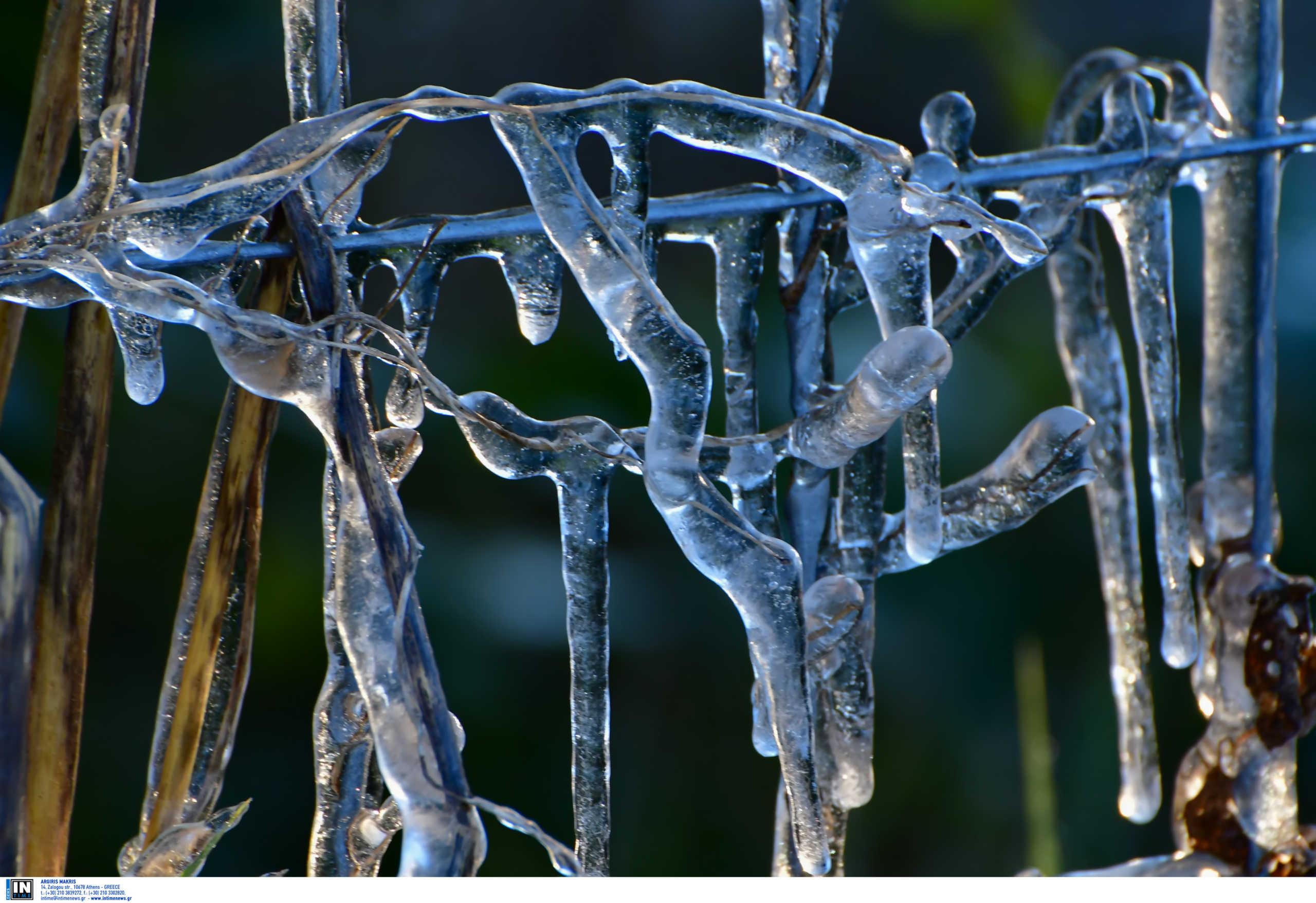 Καιρός: Ισχυρός παγετός στην Βόρεια Ελλάδα – Πού έπεσε ο υδράργυρος στους -8 (pic)