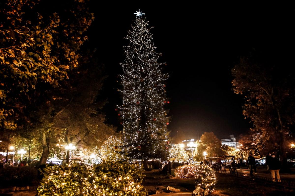 Μαγευτικές εικόνες από τα στολισμένα Τρίκαλα - Φωταγωγήθηκε το υψηλότερο  φυσικό χριστουγεννιάτικο δέντρο (pics)