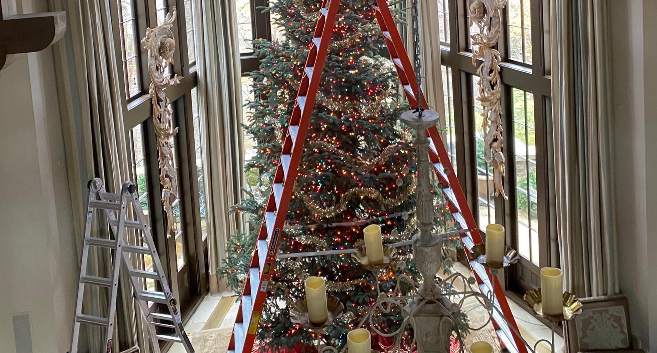 Το πανύψηλο χριστουγεννιάτικο δέντρο που έγινε viral (pics)