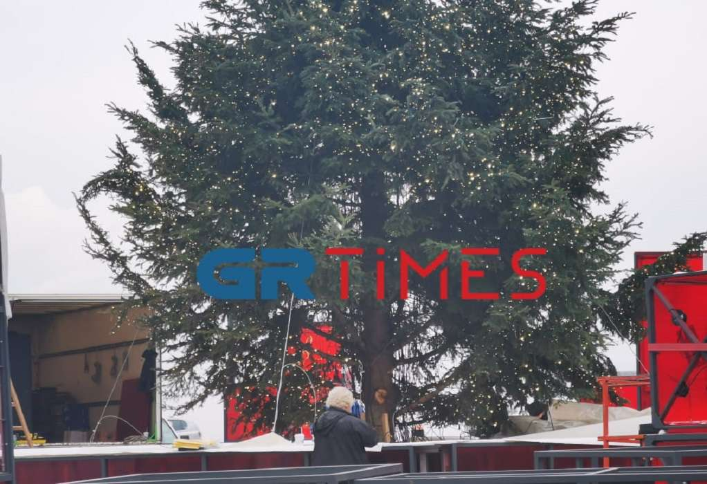 Θεσσαλονίκη: Έτσι στολίζονται τα χριστουγεννιάτικα δέντρα στην πλατεία Αριστοτέλους (βίντεο)