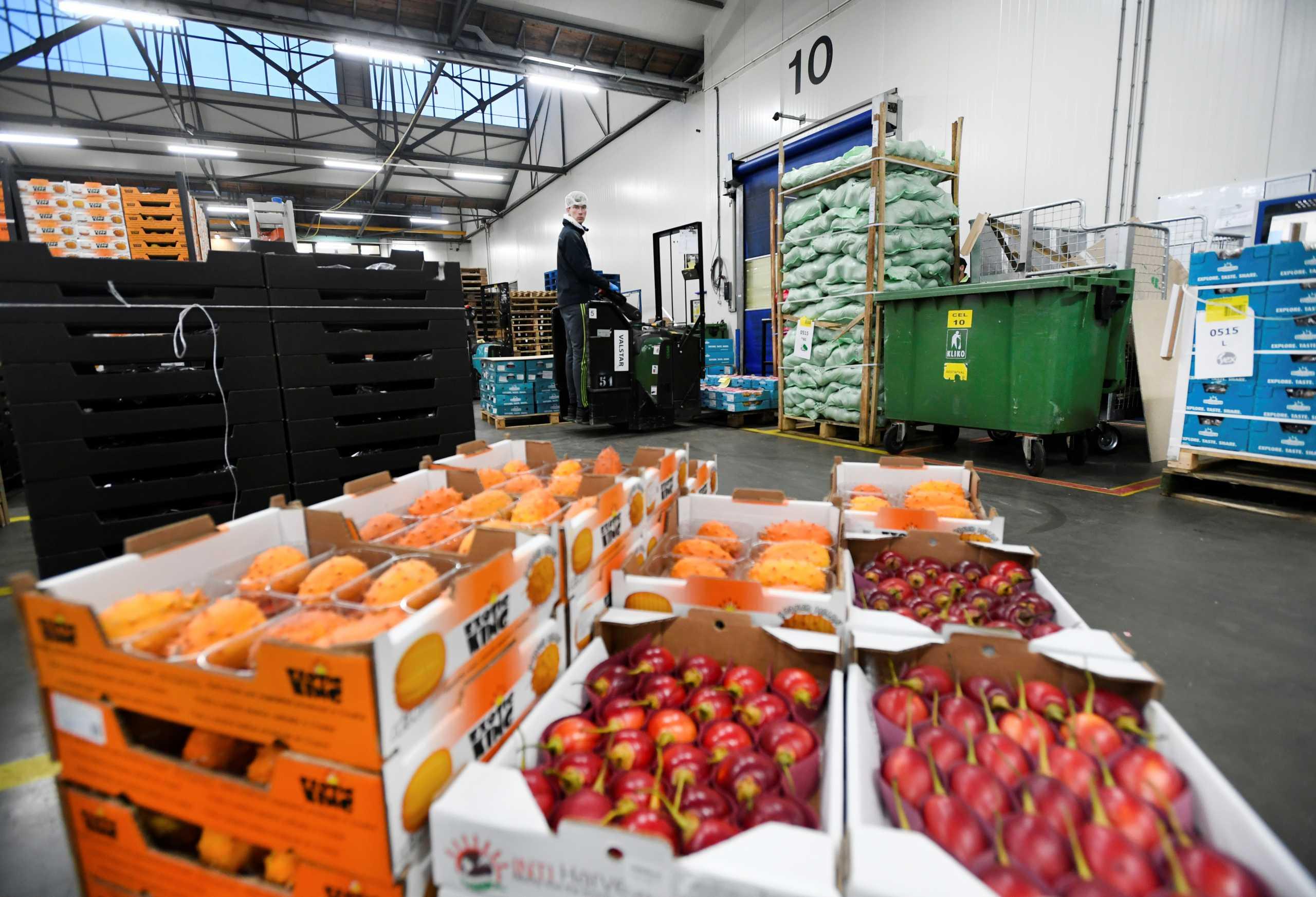 Βρετανία: Σε απόγνωση Tesco και Sainsbury's αφού ξέμειναν από φρούτα και λαχανικά