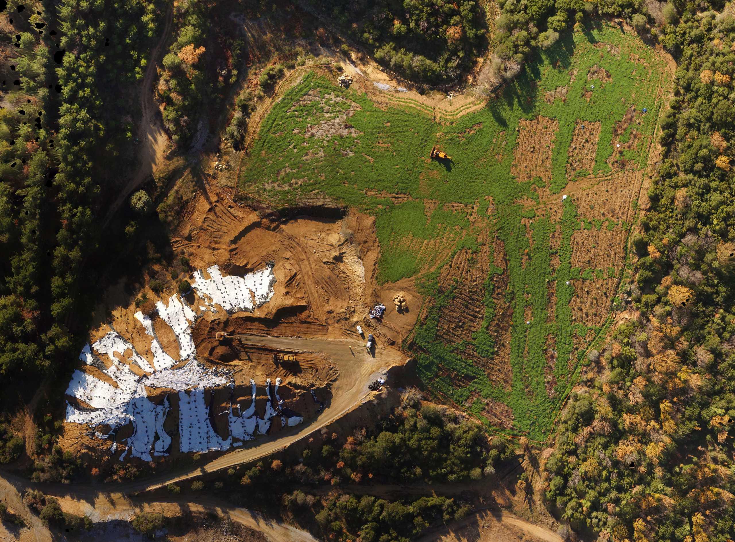 Έκταση 32.000 τ.μ. στην Ολυμπιάδα Χαλκιδικής πρασίνισε μετά από εκτεταμένα έργα αποκατάστασης από την Ελληνικός Χρυσός