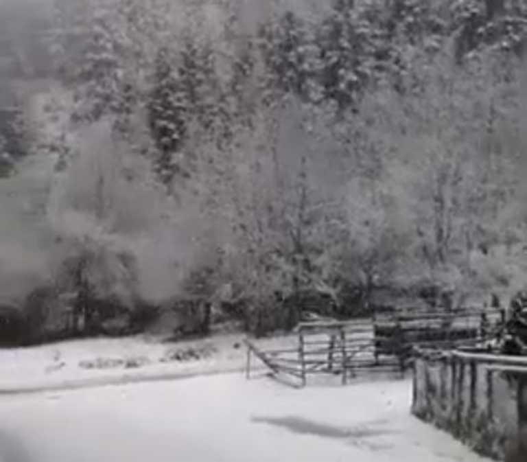 Στα «λευκά» τα Τρίκαλα – Ανοιχτοί οι δρόμοι στα ορεινά