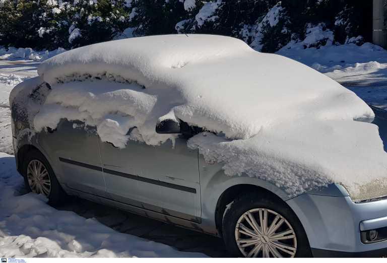 Καιρός – Λέσβος: Απεγκλωβισμοί οδηγών και κτηνοτρόφων στα χιόνια – Τα σχολεία που αύριο θα παραμείνουν κλειστά