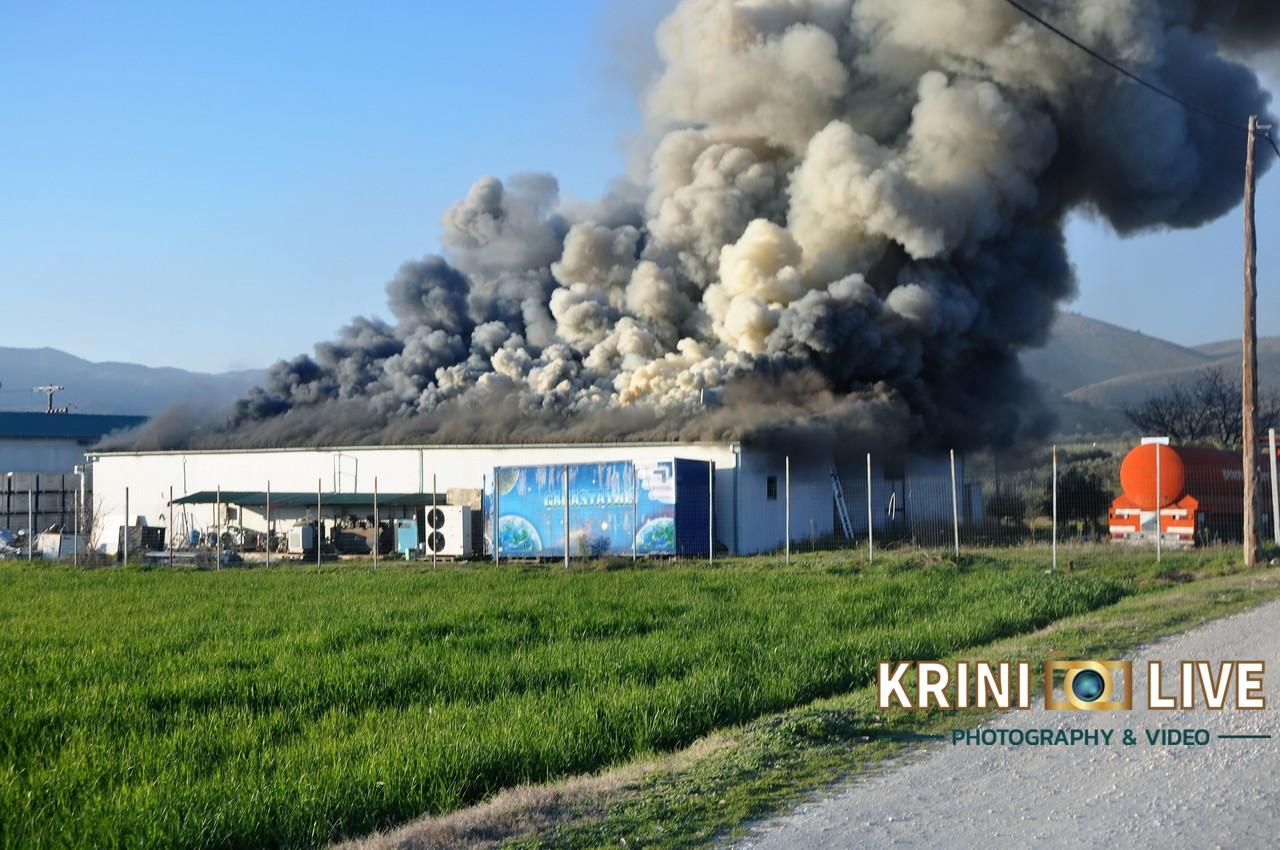 Τρίκαλα: Στάχτη το εργοστάσιο της εταιρείας «Υφαντής» – Νέες εικόνες από τη φωτιά που κατέστρεψε τα πάντα (video)