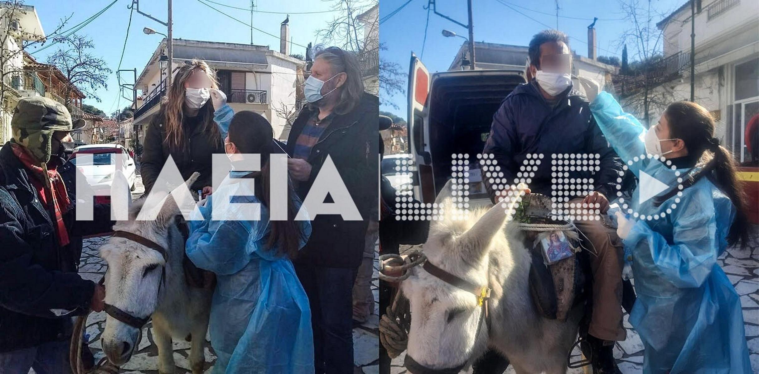 Ηλεία: Πήγαν για rapid test με γαϊδουράκια – Σπαρταριστές εικόνες