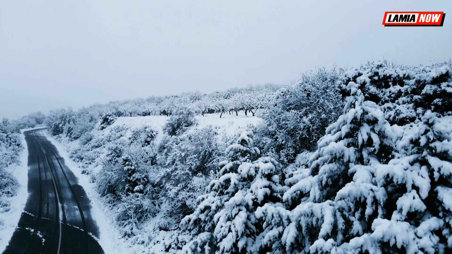 Καιρός – Φθιώτιδα: Ο χιονισμένος Μπράλος από ψηλά – Εικόνες που παραπέμπουν σε πίνακα ζωγραφικής (video)