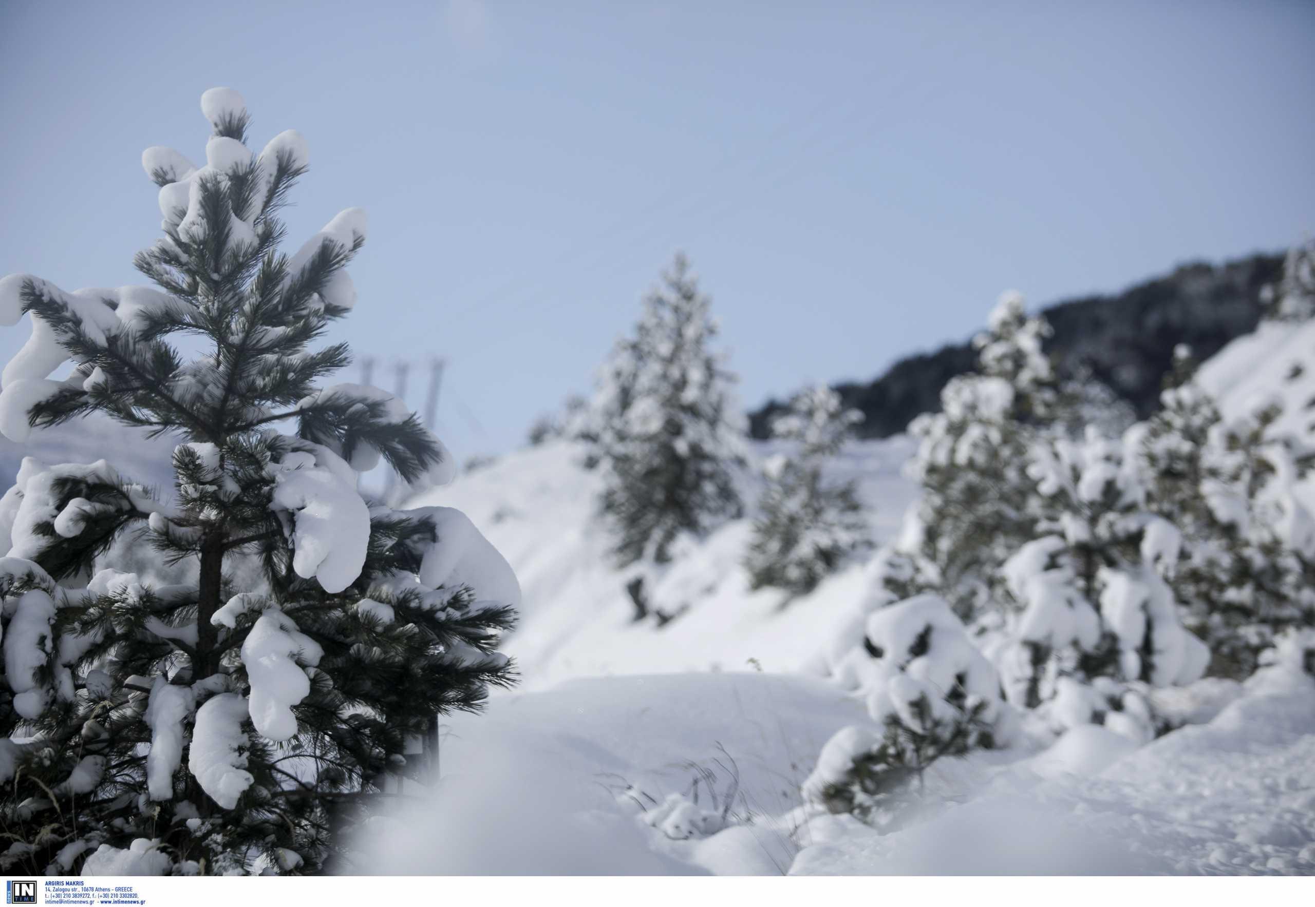Διέφυγε τον κίνδυνο ο σκιέρ που τραυματίστηκε από τη χιονοστιβάδα