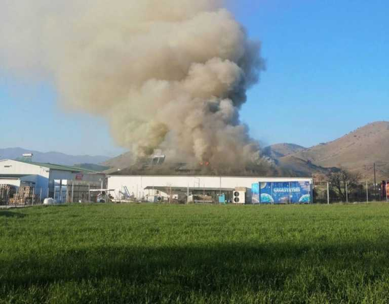 Μεγάλη φωτιά στο εργοστάσιο μεγάλης εταιρείας αλλαντικών στα Τρίκαλα