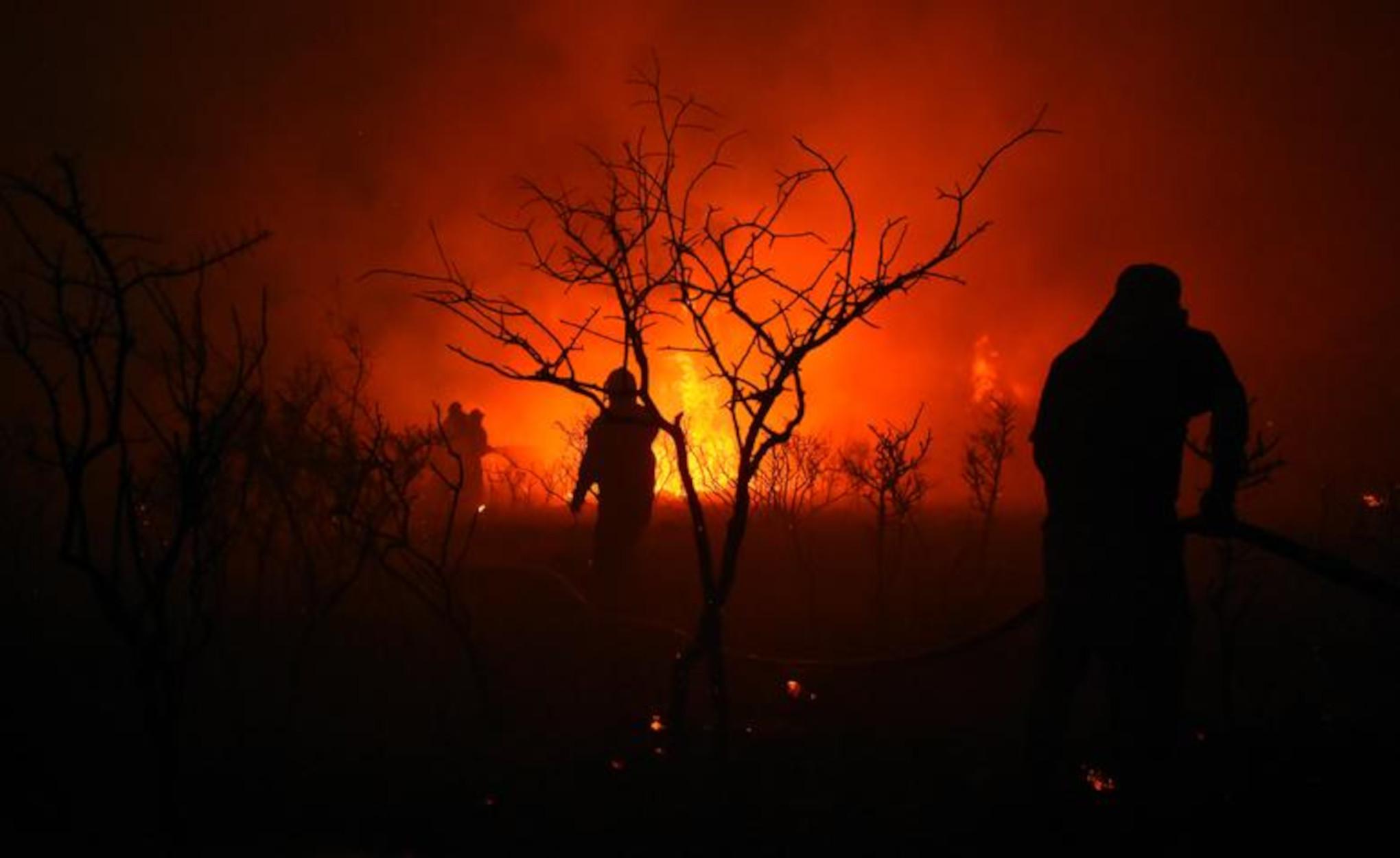 Αργεντινή: Τεράστια φωτιά κατακαίει το νότο – Στάχτη 65.000 στρέμματα δάσους