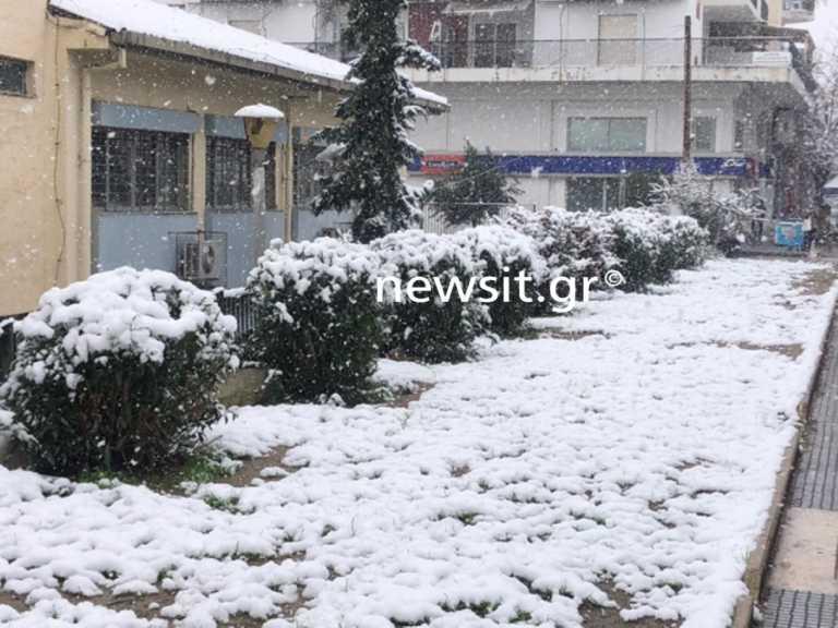 Καιρός – Θεσσαλονίκη: Χιόνια από τα ξημερώματα ακόμα και στο κέντρο της πόλης (pics)