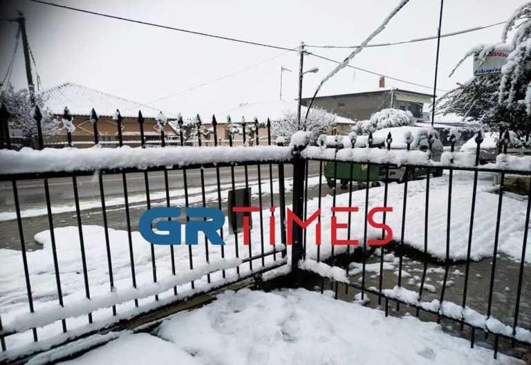 Καιρός – Ημαθία: Έντονη χιονόπτωση και διακοπές ρεύματος (photo, video)