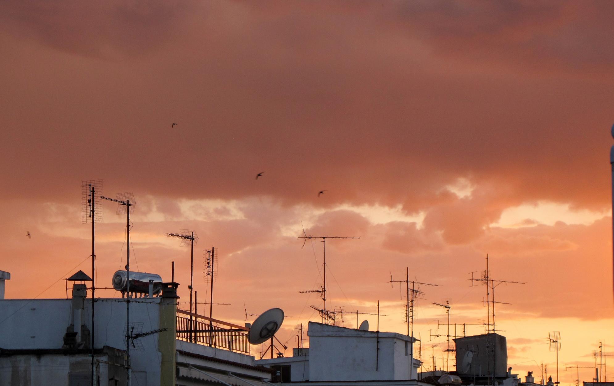 Ο καιρός στην Τρίπολη αύριο (2021-02-14)