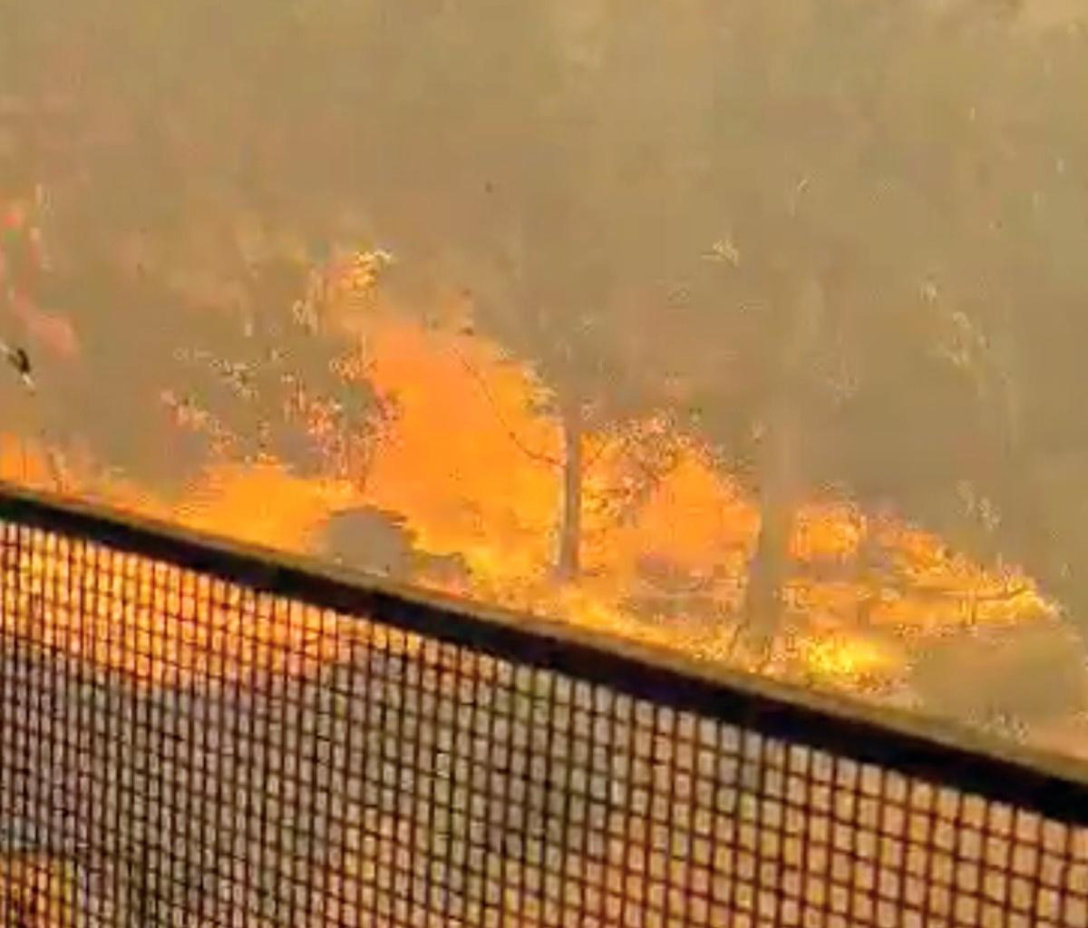 Αυστραλία: Πυρκαγιά απειλεί «ζωές και κατοικίες» στο Περθ (vid)