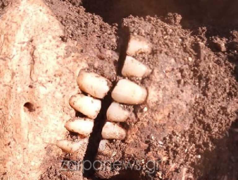 Χανιά: Θρίλερ με σκελετό σε παραλία – Σκληρές εικόνες που κόβουν την ανάσα στο σημείο (pics)