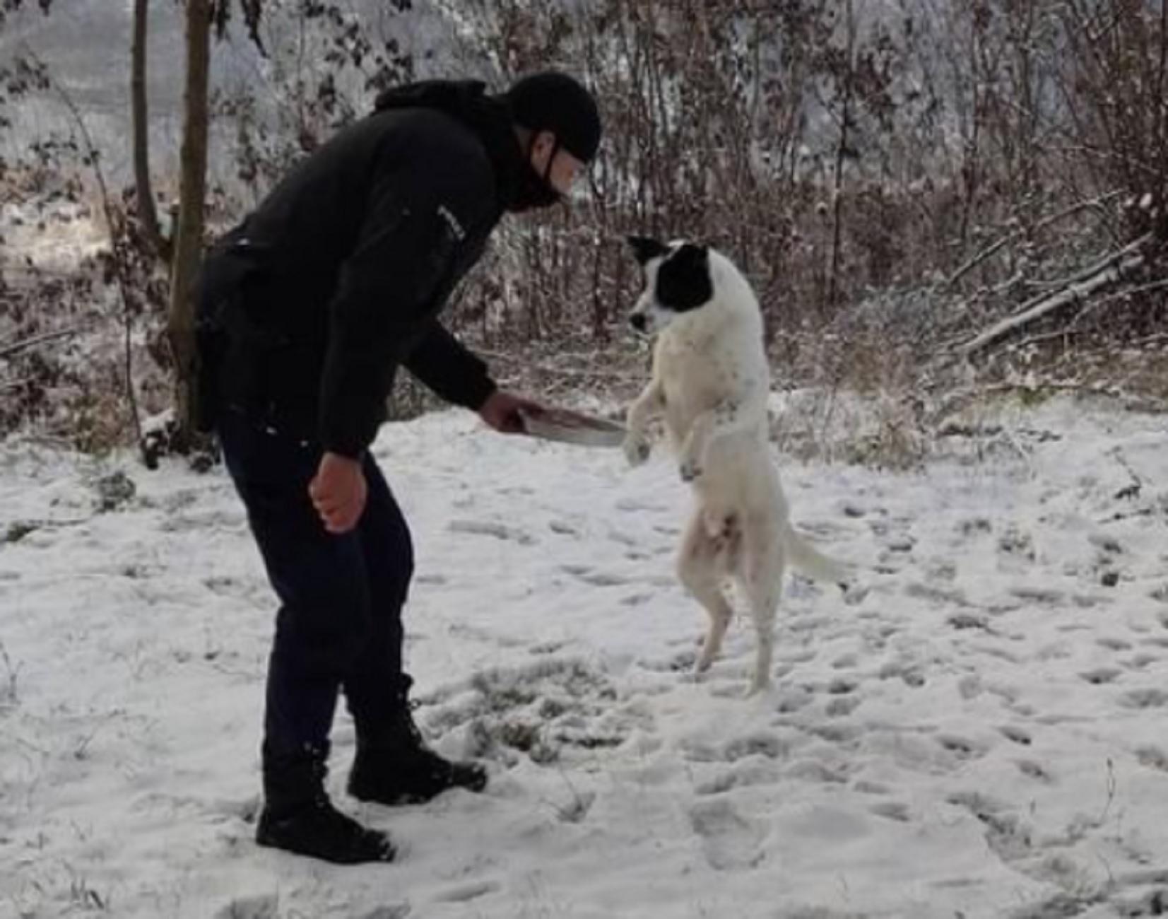 Ήπειρος: Η κίνηση αγάπης αστυνομικού σε αδέσποτο σκύλο που έγινε viral μέσα σε λίγες ώρες (pic)