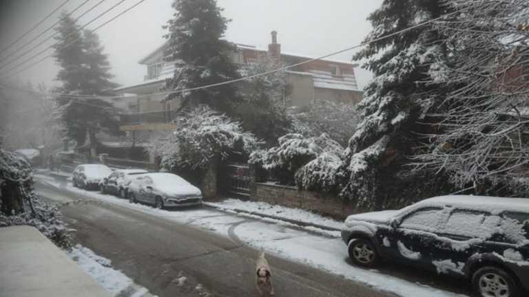 Καιρός – Μυτιλήνη: Επελαύνει ο Λέανδρος και ντύνει το νησί στα λευκά