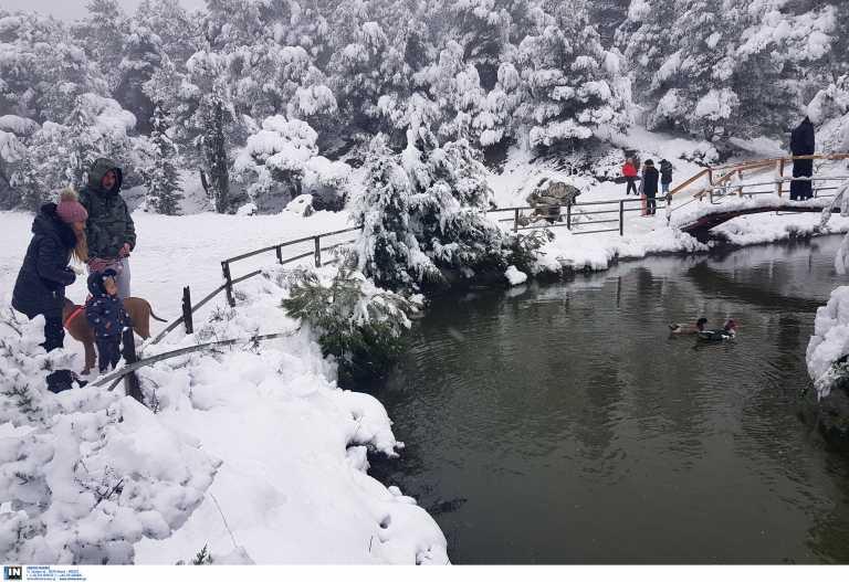 Καιρός αύριο: Χιόνια και πολικές θερμοκρασίες