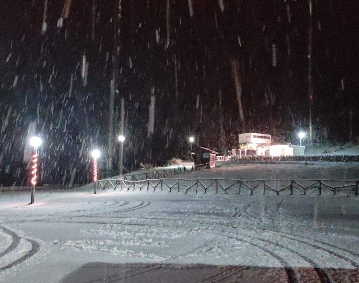 Καιρός: Έντονη χιονόπτωση στα Τρίκαλα (video)