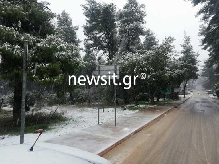 Καιρός: Που θα χιονίσει τη Δευτέρα – Live που χιονίζει τώρα