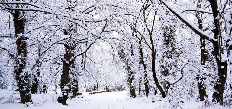 Καιρός σήμερα: Ήλιος με δόντια – Πολικές θερμοκρασίες και ολικός παγετός