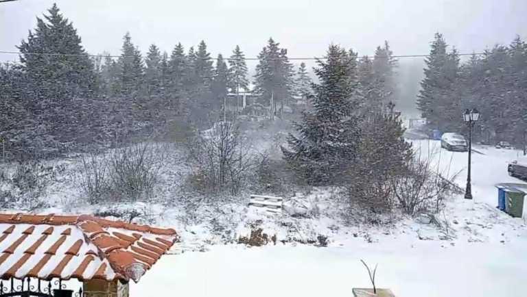 Καιρός: Χιόνια και τσουχτερό κρύο στη Βόρεια Ελλάδα – Πού χρειάζονται αλυσίδες (pics, vid)