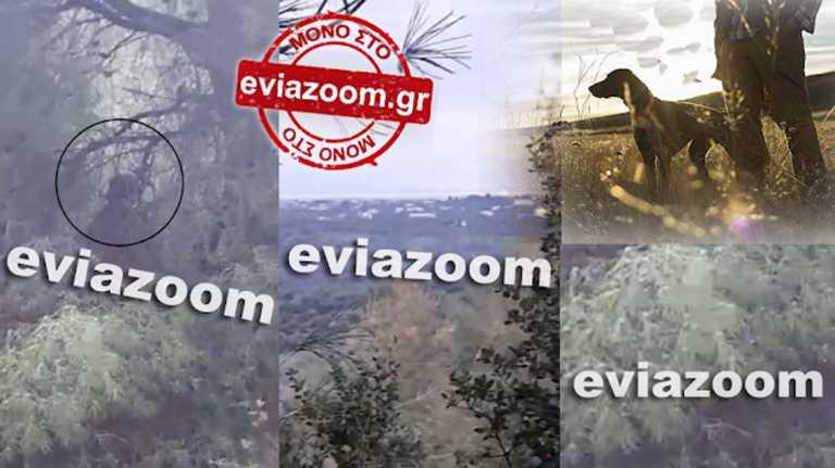 Εύβοια: Θρίλερ με τον κρεμασμένο σε  δέντρο – Τι λέει ο κυνηγός που τον εντόπισε (pics, video)