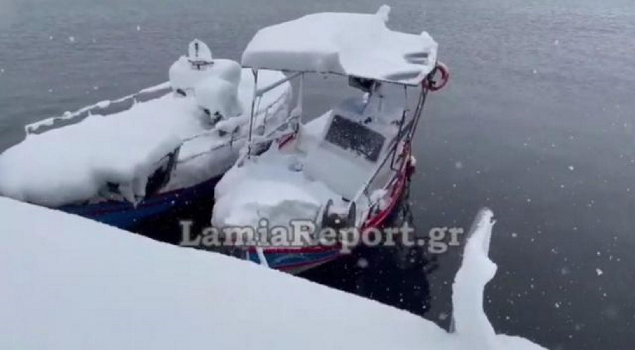 Καιρός – Λάρυμνα: Η παραλία στα λευκά – «Από το '87 έχουμε να δούμε τόσο χιόνι» (video)