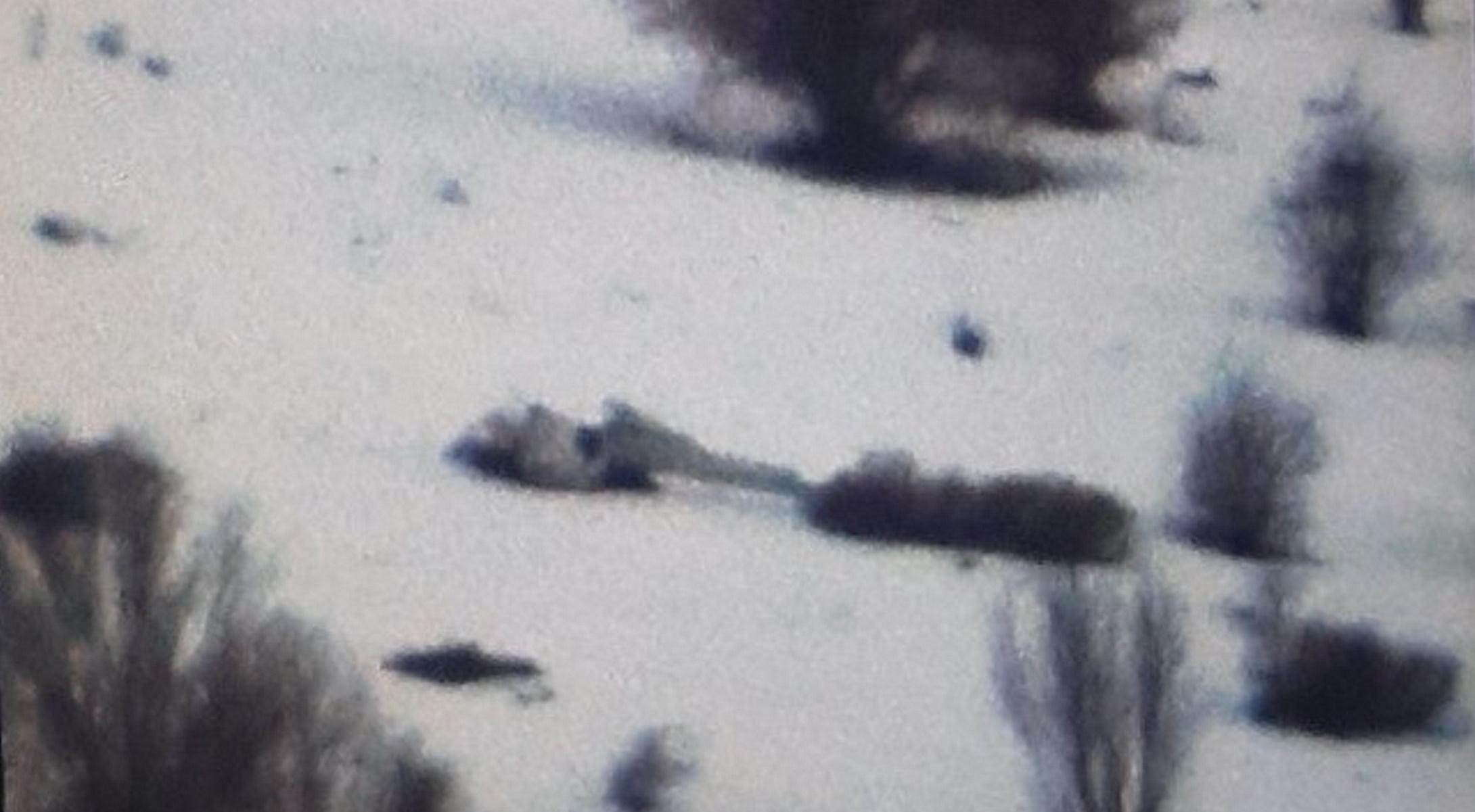 Ιωάννινα: Εντοπίστηκαν συντρίμμια του αεροσκάφους θαμμένα στα χιόνια