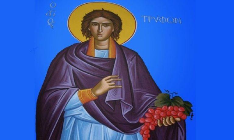 Γιατί ο Άγιος Τρύφων που γιορτάζει σήμερα είναι προστάτης των αμπελουργών