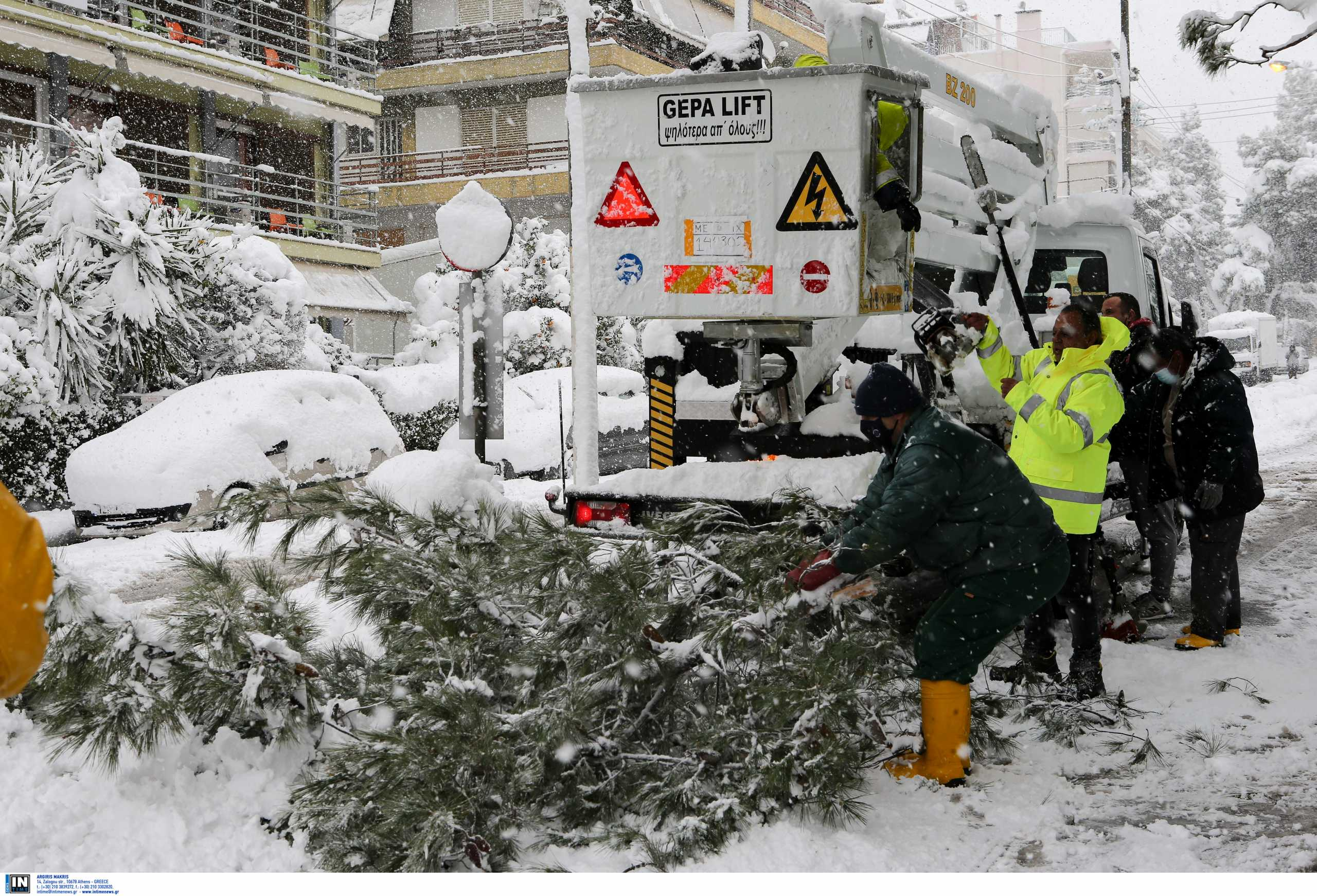 Περισσότερα από 20 δέντρα έχουν πέσει στον δήμο Πεντέλης