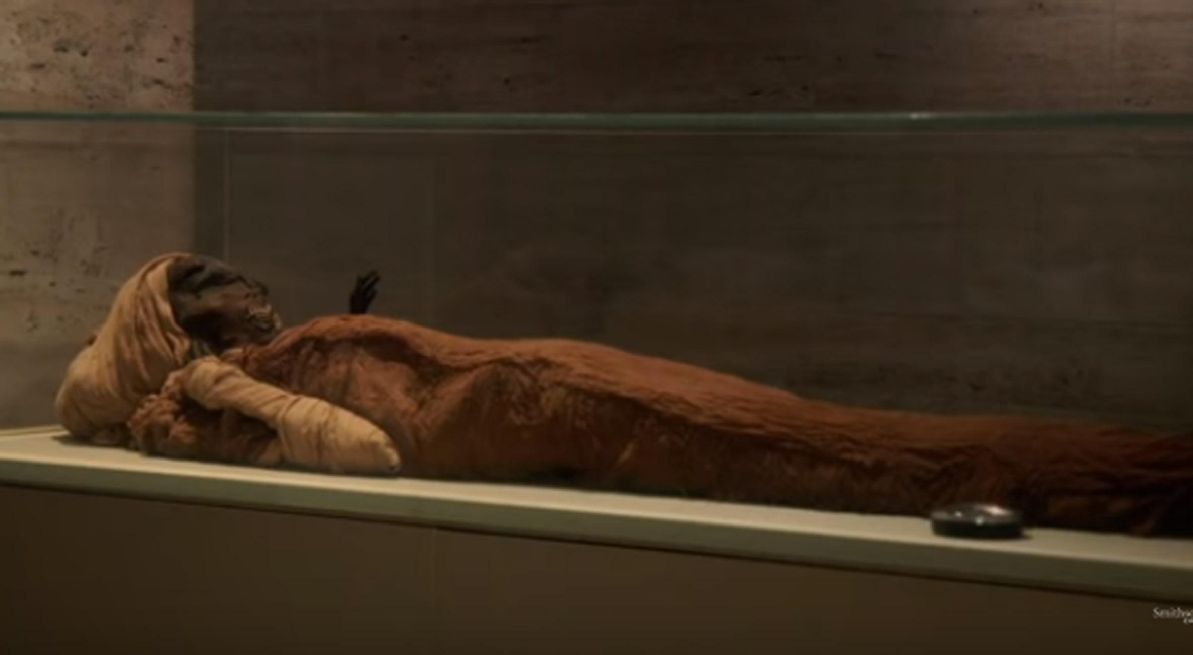 Αίγυπτος: Πως πέθανε ο «γενναίος» Φαραώ – Απίθανη ανακάλυψη των επιστημόνων
