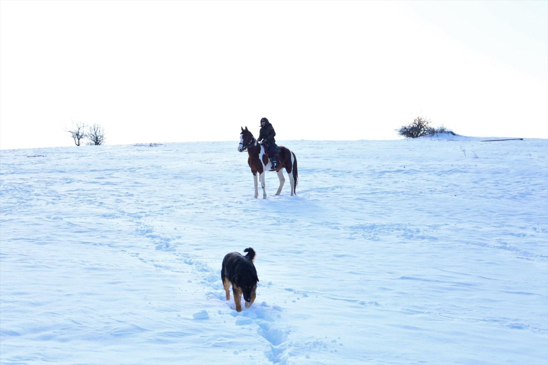 Μαγικές εικόνες: Ιππασία στα χιόνια του Ολύμπου (video)