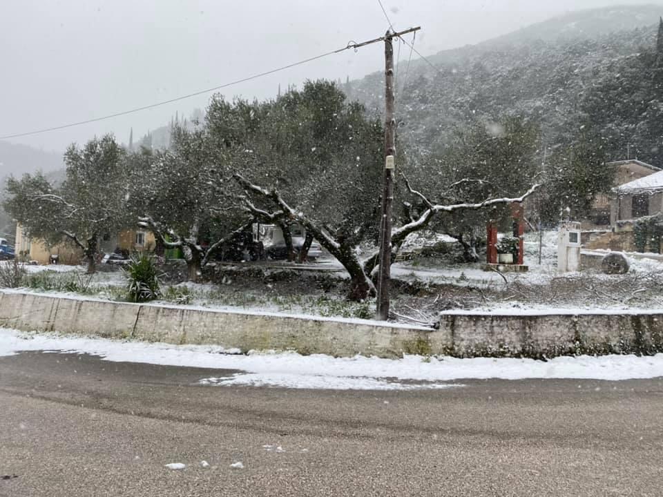 Καιρός – Κεφαλονιά: Διακοπές ρεύματος και δρόμοι παγίδες στα χιόνια – Επί ποδός τα συνεργεία του δήμου (pics)