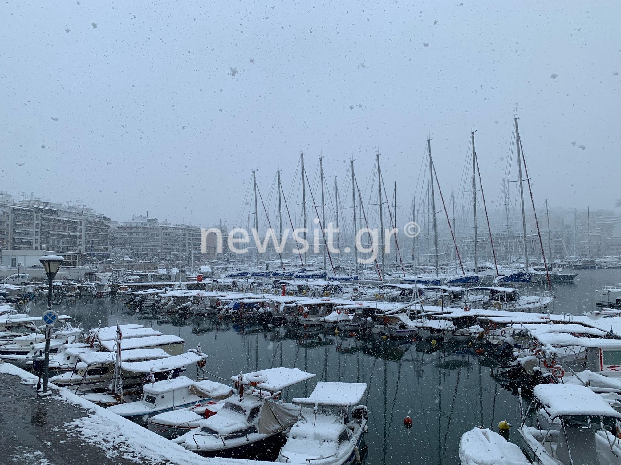 Καιρός – Μήδεια: Βγήκε για… σκι στον Πειραιά – Σπάνιες εικόνες στο λιμάνι (video)