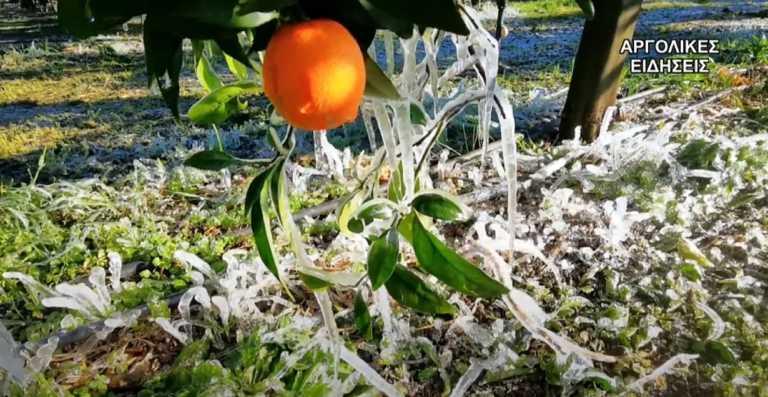 Καιρός – Αργολίδα: Οι νέες εικόνες της κακοκαιρίας – Πάγωσαν τα χιόνια και έφεραν δυσκολίες (video)
