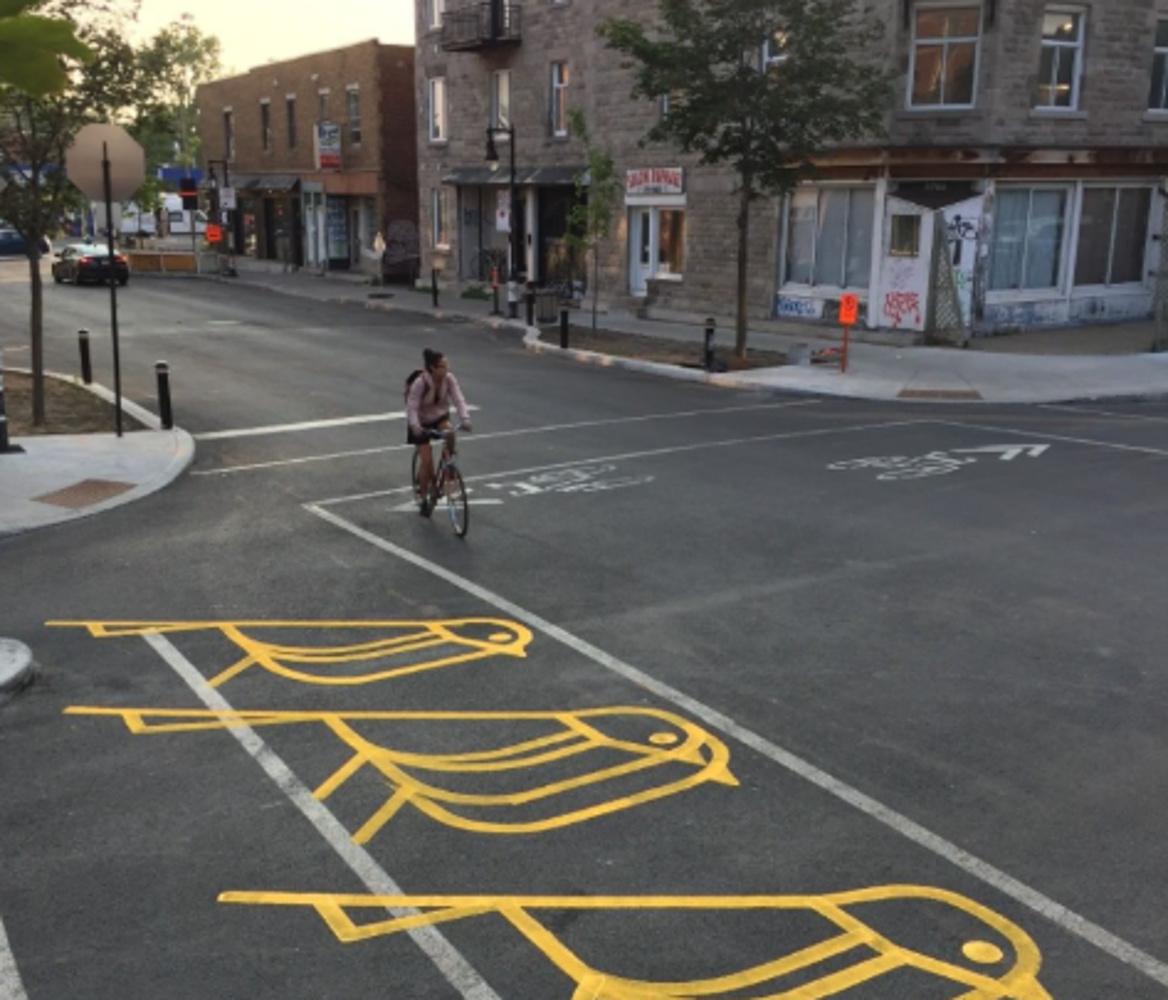 Καναδάς: «Τέχνη» στους δρόμους του Μόντρεαλ – «Στολισμός» με πουλιά και ψάρια