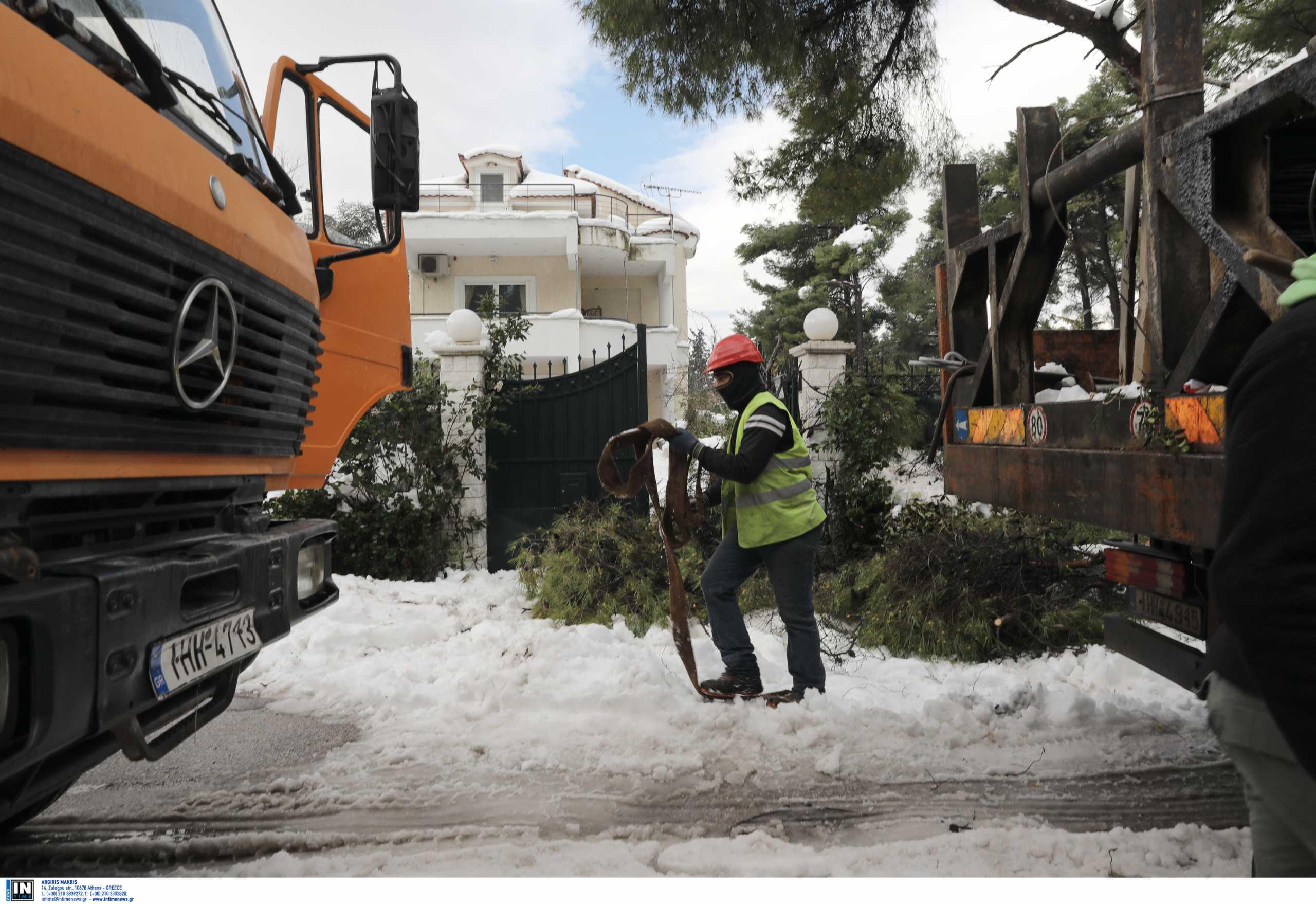 Διόνυσος: 72 δραματικές ώρες για χιλιάδες πολίτες – 1.200 δέντρα πεσμένα και 4 καυτά ερωτήματα