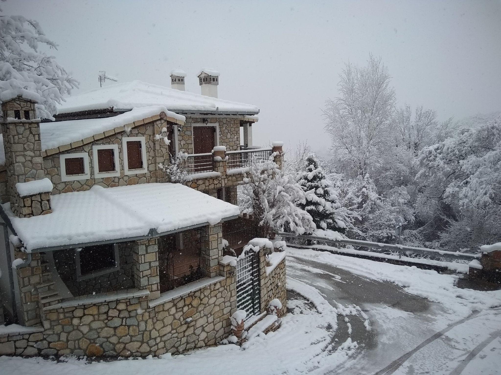 Καιρός – Τρίκαλα: Ολονύχτια μάχη με τα χιόνια – Πολλά χωριά χωρίς ρεύμα (pics)