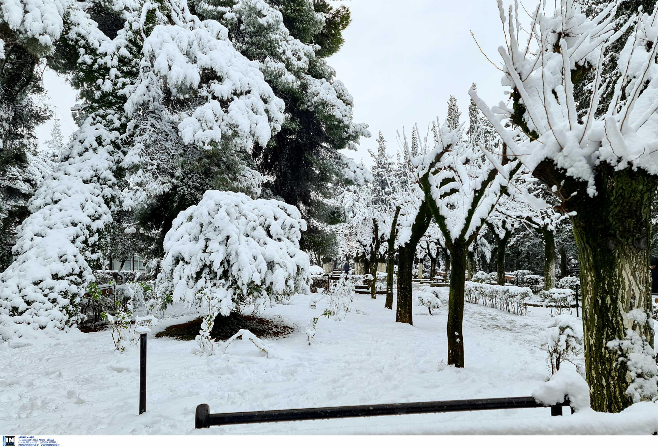 Φλώρινα: Ζώντας στους -25 βαθμούς – Τι λένε οι κάτοικοι του πιο παγωμένου χωριού στην Ελλάδα