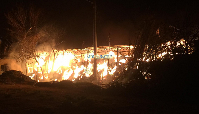 Άργος: Μεγάλη φωτιά σε φάρμα – Εικόνες που σοκάρουν