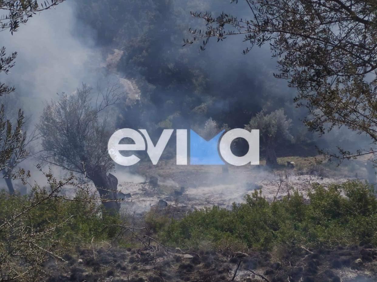 Φωτιά στην Εύβοια, η 3η μέσα σε λίγες ώρες (pics)