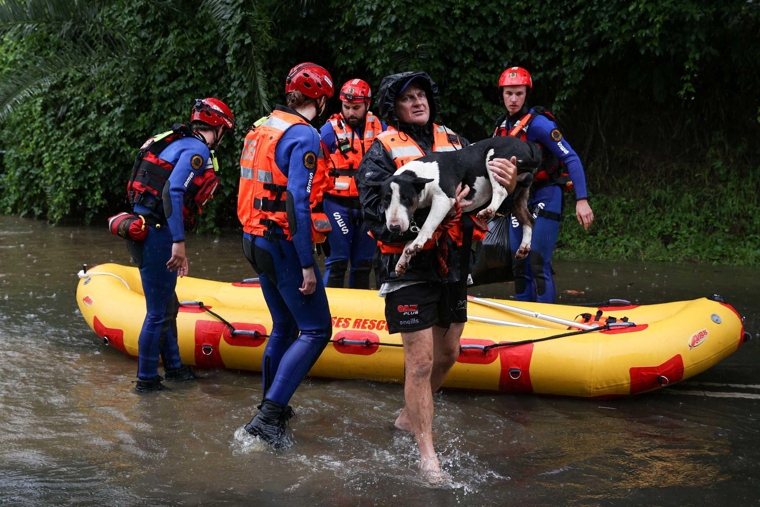 Σίδνεϊ: Σπαρακτικό γαύγισμα από εγκλωβισμένα σκυλιά για να σωθούν από τις πλημμύρες (pics)