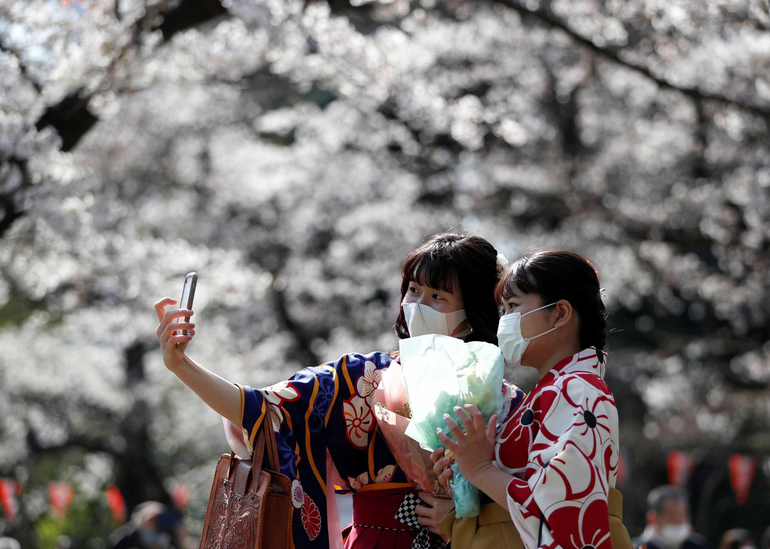 Ιαπωνία: Ο κορονοϊός «φρενάρει» τους εορτασμούς για τις ανθισμένες κερασιές (pics)