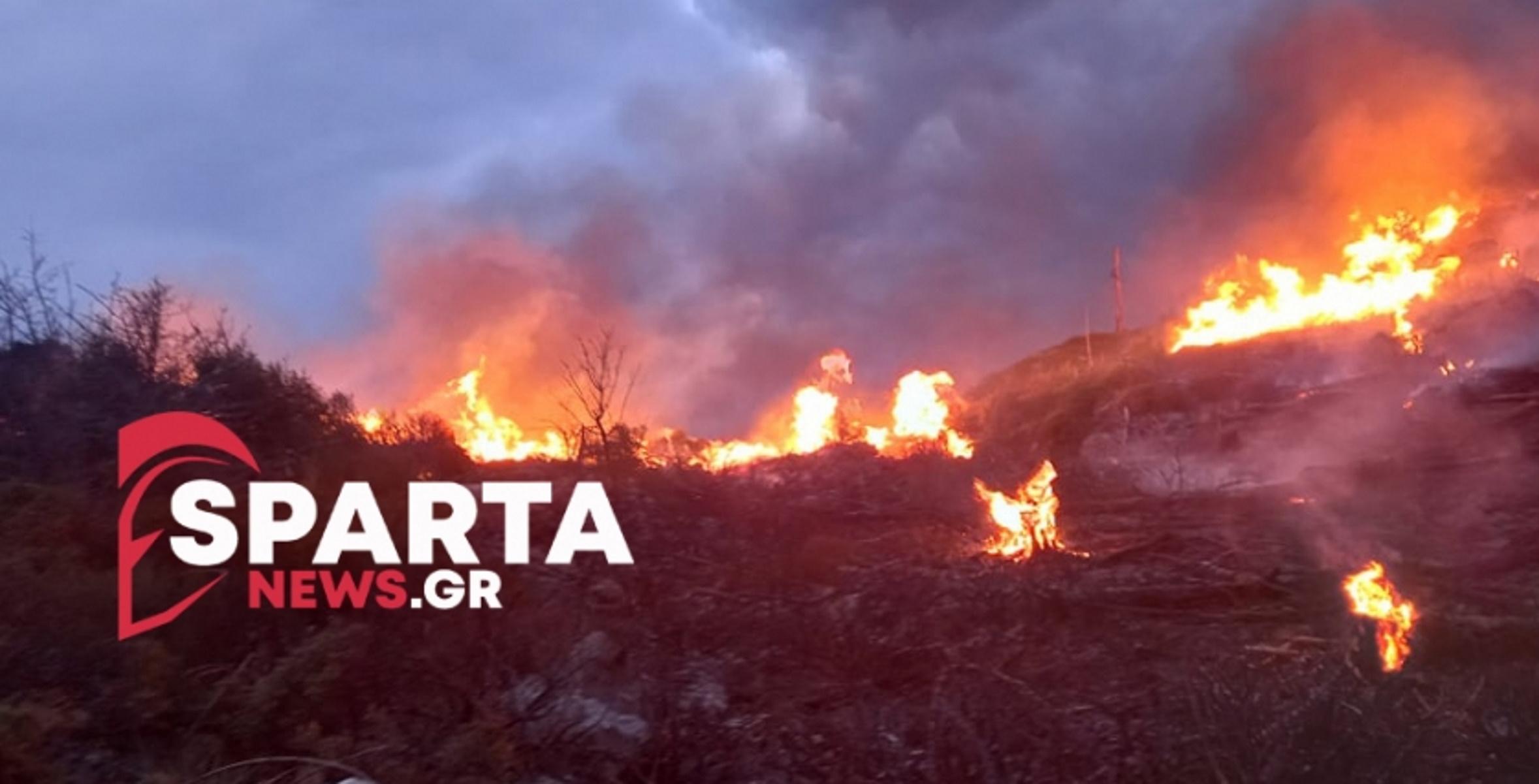 Μεγάλη φωτιά στη Λακωνία – Μάχη για να μην επεκταθεί στα χωριά του Ευρώτα (pics, vid)