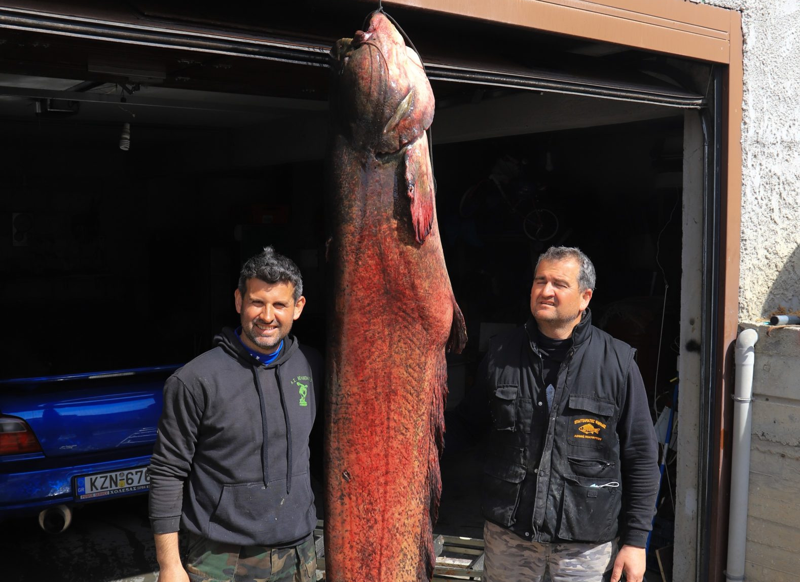 Κοζάνη: Απίστευτη ψαριά για δύο αδέρφια – Έπιασαν γουλιανό γίγα 2,77 μέτρων