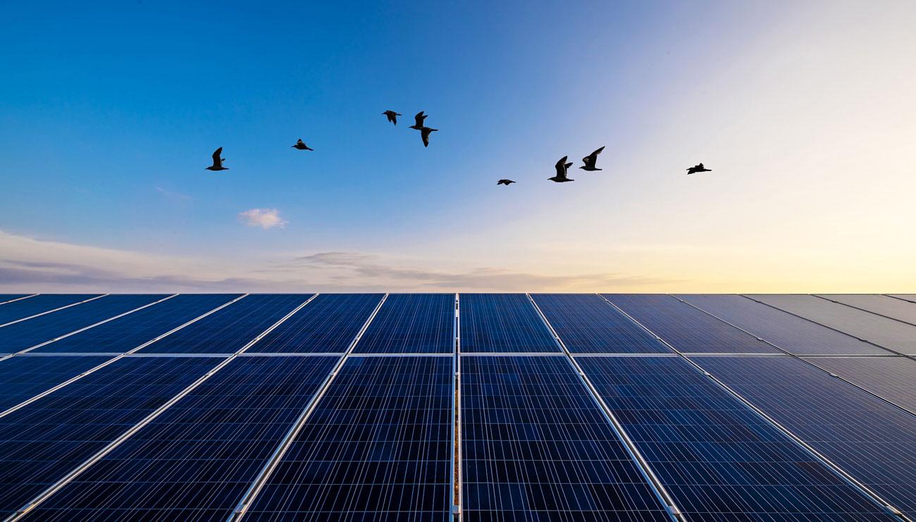 Mytilineos: Ανάδοχος για την κατασκευή φωτοβολταϊκού πάρκου στο Ουζμπεκιστάν