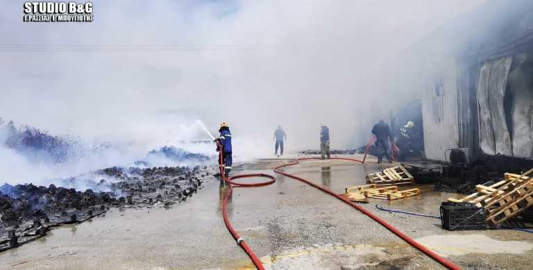 Μεγάλη φωτιά σε εργοστάσιο στην Αργολίδα (pics, vid)