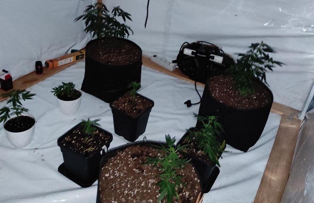 Στα χέρια της Αστυνομίας 7 διακινητές ναρκωτικών